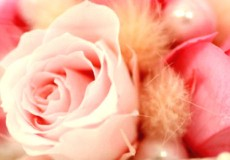 『愛着の持てる婚約指輪選び』